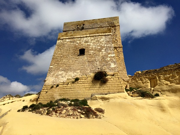 nature around xlendi tower in gozo
