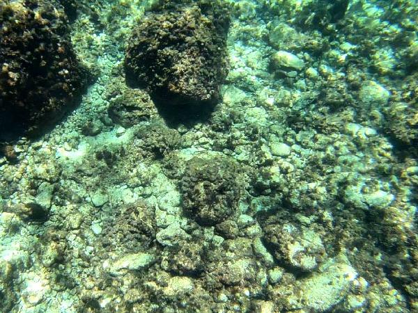coral lagoon malta kayak