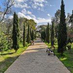 kennedy grove malta