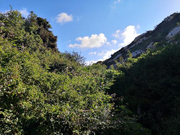 wied babu zurrieq malta nature