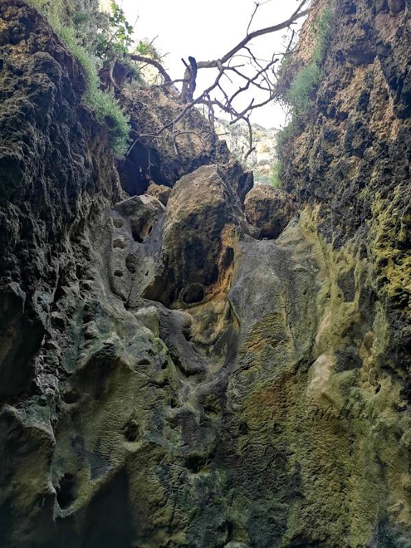 migra ferha canyon