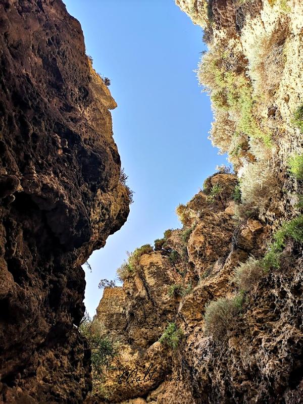 migra ferha canyon view