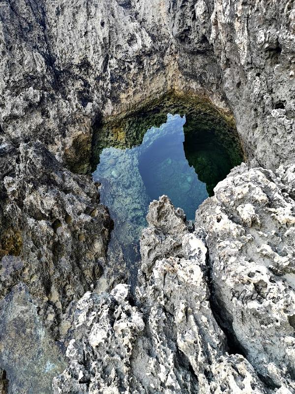 migra ferha tiny pool