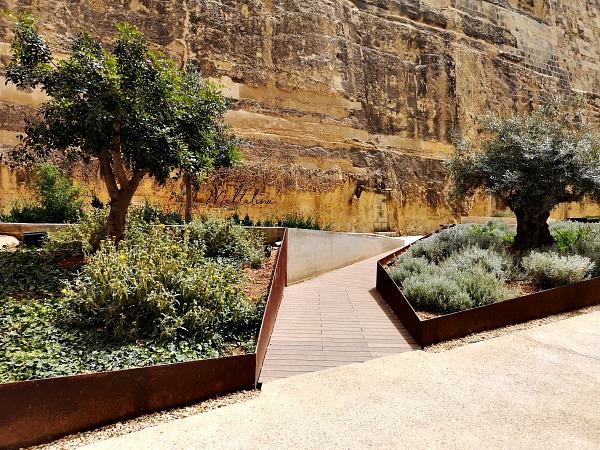 valletta ditch garden trees