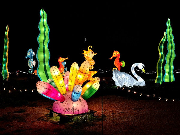 Illuminated Trail Malta Review